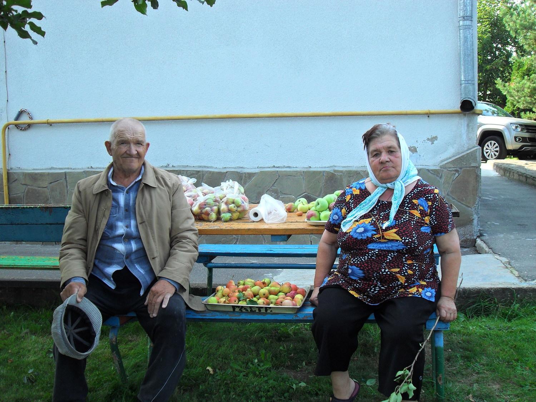 Частный дом престарелых ковчег красноярск пансионаты для детей инвалидов в самаре